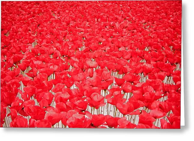 Poppy Meadow ... Greeting Card by Juergen Weiss