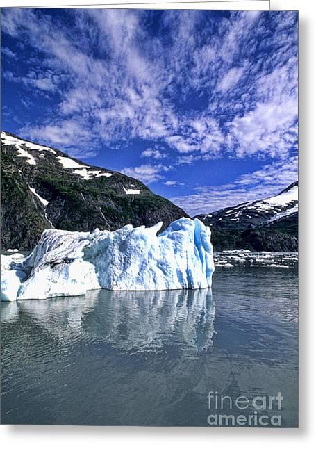 Portage Glacier, Alaska Greeting Card by Bill Bachmann
