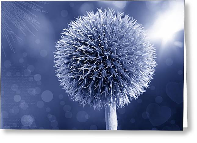 Blue Thistles Greeting Cards - Prickly Beauty Greeting Card by Pixabay