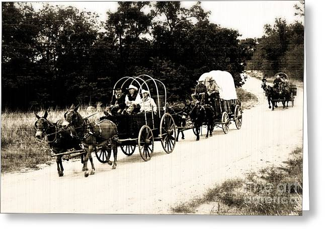 Horse Driven Wagon Greeting Cards - Provisions Greeting Card by Fred Lassmann