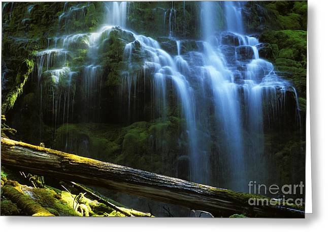 Proxy Falls Oregon Greeting Card by Bob Christopher
