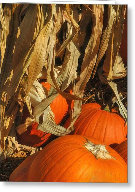 Harvest Deco Photographs Greeting Cards - Pumpkin Harvest Greeting Card by Joann Vitali