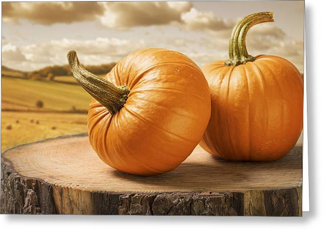 Hay Bales Greeting Cards - Pumpkins Greeting Card by Amanda And Christopher Elwell