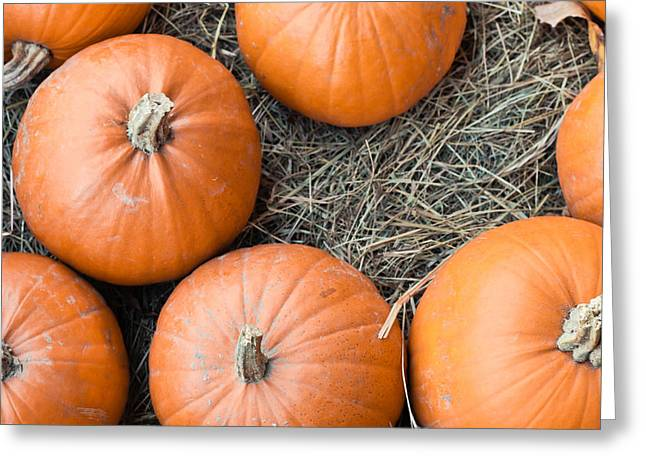 Overflow Greeting Cards - Pumpkins Greeting Card by Tom Gowanlock