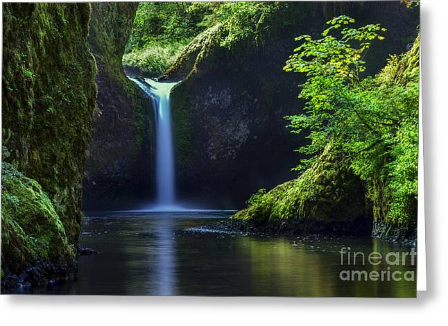 Punchbowl Falls Greeting Card by Brian Jannsen
