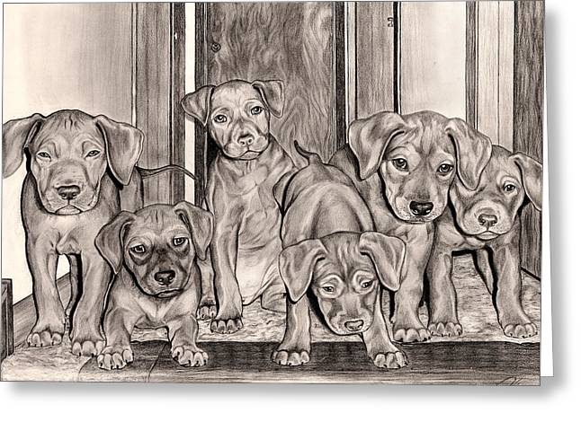 Prospects Drawings Greeting Cards - Puppies In The Hallway Greeting Card by Omoro Rahim