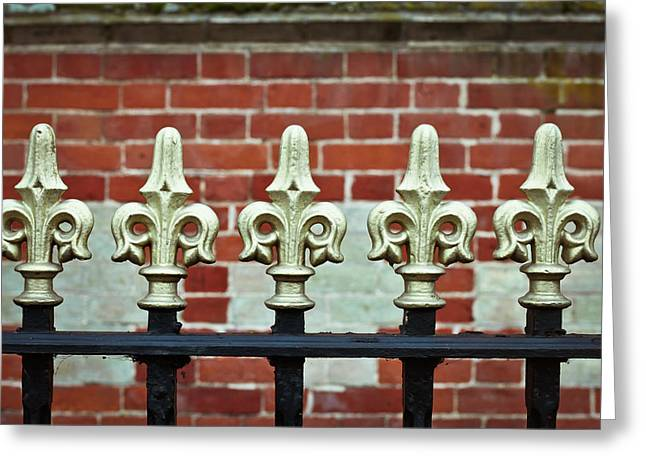 Swirly Greeting Cards - Railings Greeting Card by Tom Gowanlock