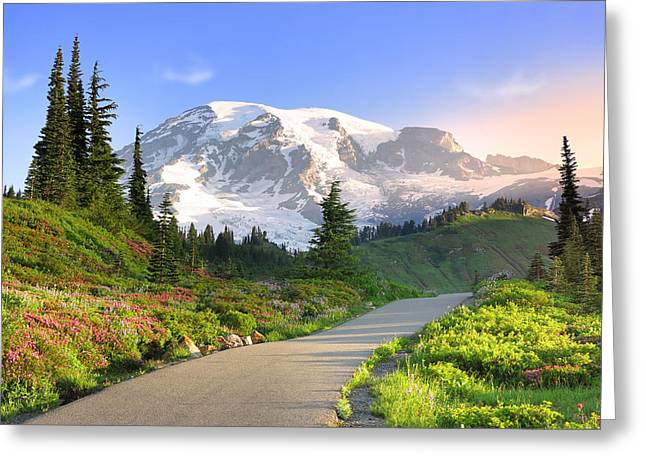 Aster Greeting Cards - Rainier National Park Greeting Card by King Wu
