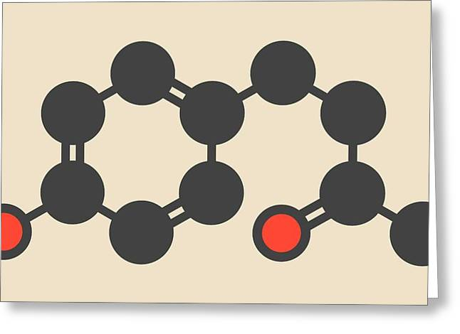 Raspberry Ketone Molecule Greeting Card by Molekuul