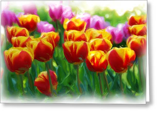 Spring Bulbs Mixed Media Greeting Cards - Red and Yellow Tulips Greeting Card by Allen Beatty