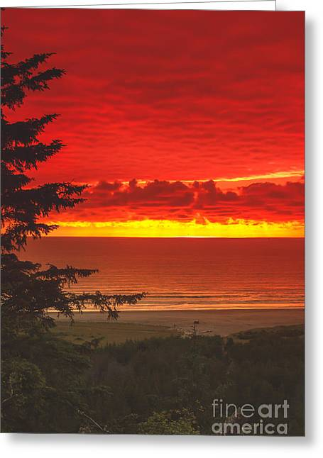 Haybales Greeting Cards - Red Pacific Greeting Card by Robert Bales