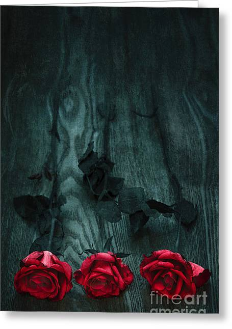 Surprise Greeting Cards - Red Roses Greeting Card by Svetlana Sewell