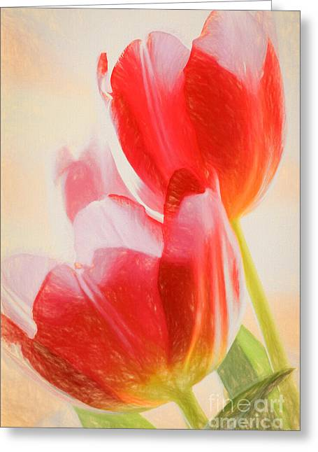 Christian Pictures Digital Greeting Cards - Red Tulips Greeting Card by VistoOnce Photography