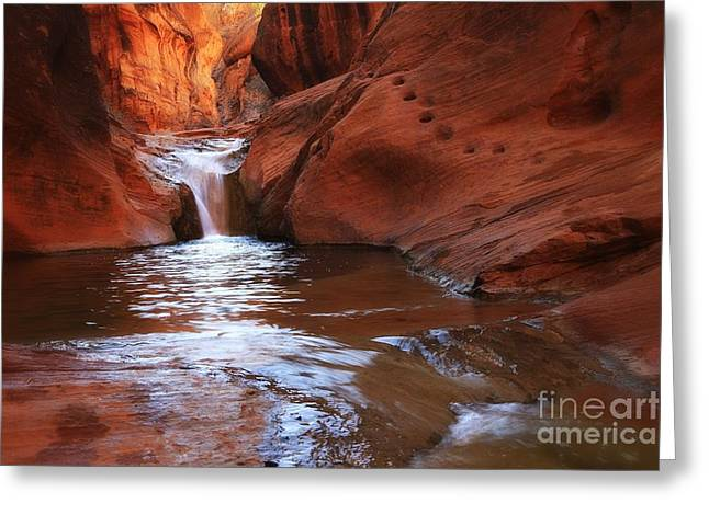 Recently Sold -  - Southern Utah Greeting Cards - RedCliffs Greeting Card by Roxie Crouch
