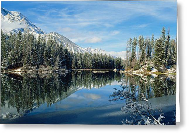 Reflection Of Trees In A Lake Greeting Card by Panoramic Images