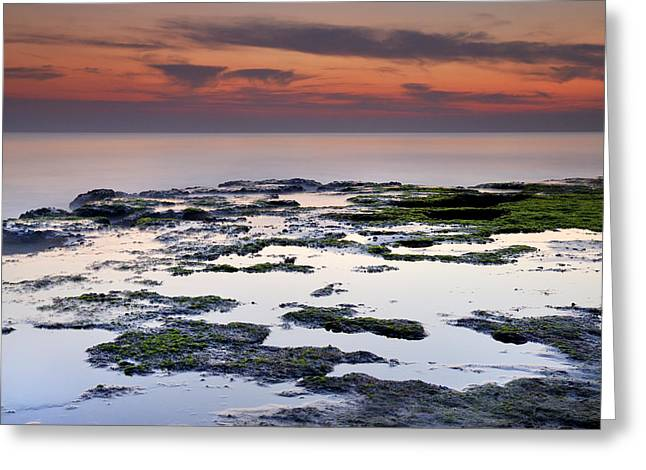 Blue Green Wave Greeting Cards - Reflexion Greeting Card by Guido Montanes Castillo