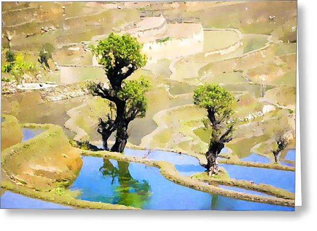 Organic Greeting Cards - Rice terraces of yuanyang Greeting Card by Lanjee Chee