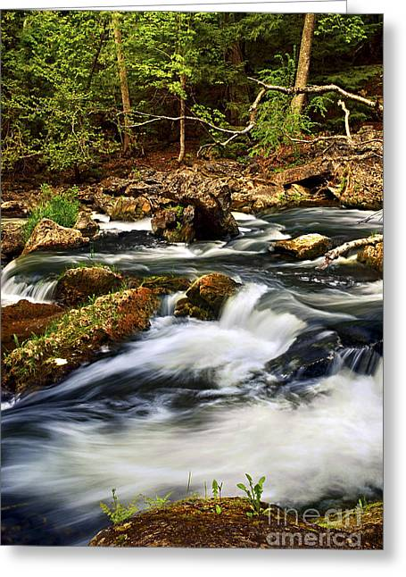 Rushing Water Greeting Cards - River rapids Greeting Card by Elena Elisseeva