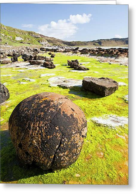 Rock Formations At The Bay Of Laig Greeting Card by Ashley Cooper