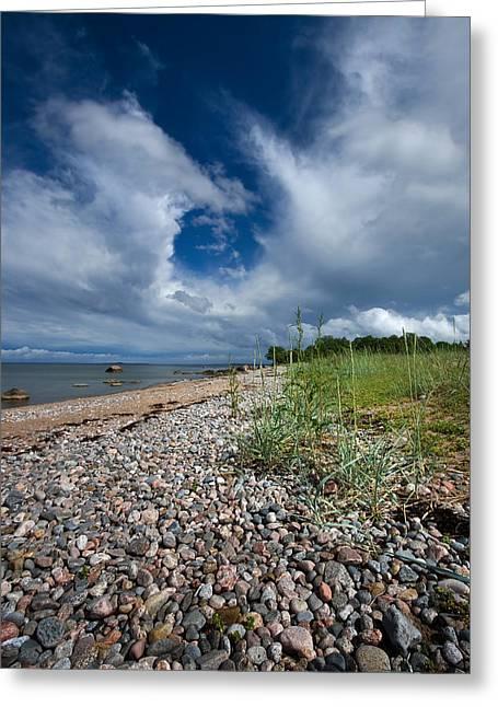 Atlantic Beaches Pyrography Greeting Cards - Rocky beach Greeting Card by Anna Grigorjeva