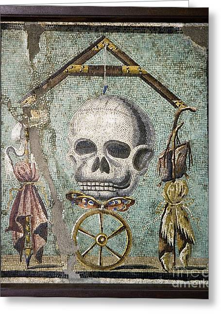 Plumb Greeting Cards - Roman Memento Mori Mosaic Greeting Card by Sheila Terry