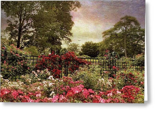 Trellis Digital Greeting Cards - Rose Garden Trellis Greeting Card by Jessica Jenney