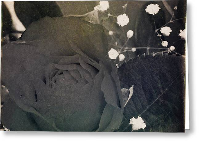 Sepia Flowers Greeting Cards - Rose Greeting Card by Les Cunliffe
