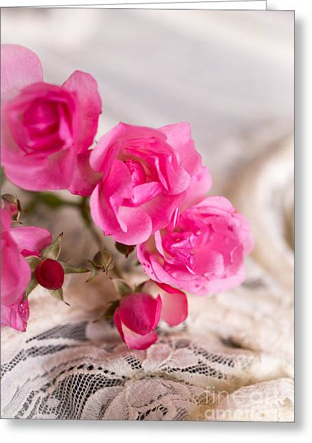 Announcement Greeting Cards - Roses and Lace Greeting Card by Edward Fielding