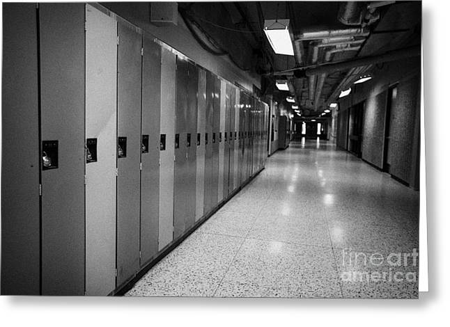 Lock Down Greeting Cards - row of locked school lockers in empty corridor of High school canada north america Greeting Card by Joe Fox