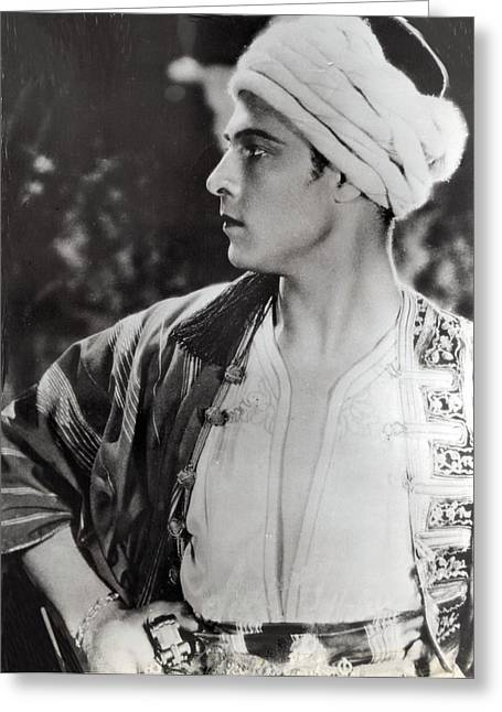 Rudolph Greeting Cards - Rudolph Valentino Greeting Card by Kay Shackleton