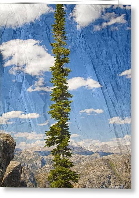 Bridger Teton Greeting Cards - Rugged Wind River Range - Where Solitude Rules Greeting Card by John Stephens