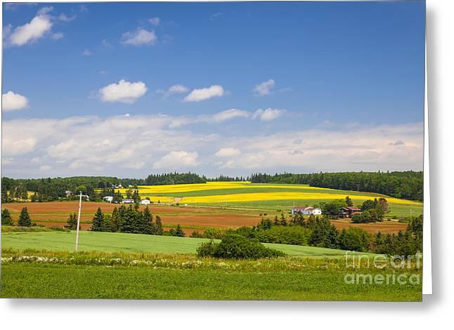 Pei Greeting Cards - Rural landscape Greeting Card by Elena Elisseeva