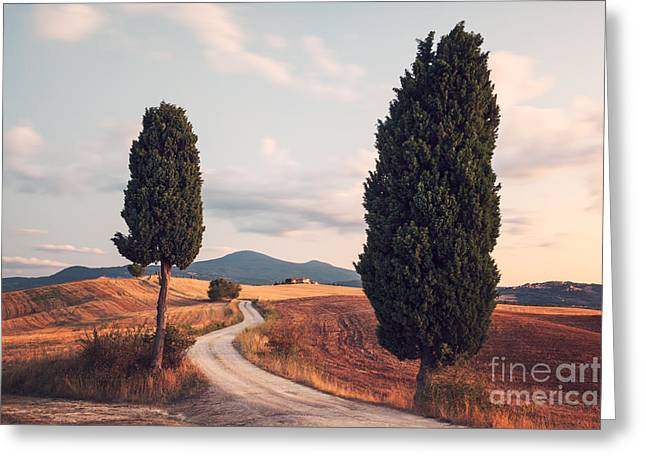 Tuscan Sunset Photographs Greeting Cards - Rural road with cypress tree in Tuscany Italy Greeting Card by Matteo Colombo
