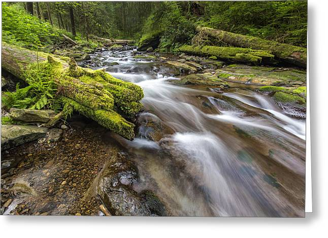 Rushing Water Greeting Cards - Rush Rush Greeting Card by Jon Glaser