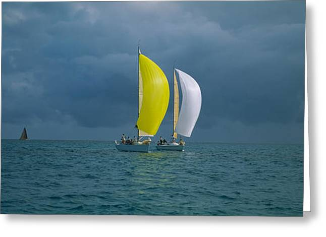 Ocean Images Greeting Cards - Sailboat Racing In The Ocean, Key West Greeting Card by Panoramic Images