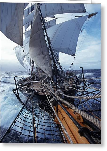 Water Vessels Greeting Cards - Sailing boats Kruzenshtern Greeting Card by Anonymous