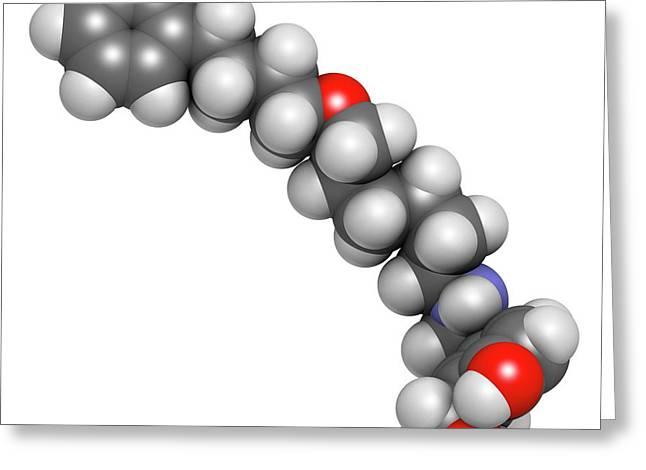 Salmeterol Asthma Drug Molecule Greeting Card by Molekuul