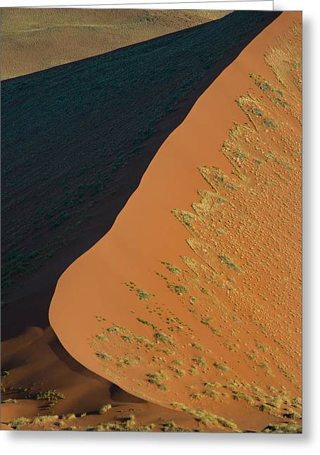 Park Scene Greeting Cards - Sand Dune, Sossusvlei, Namib Desert Greeting Card by Panoramic Images