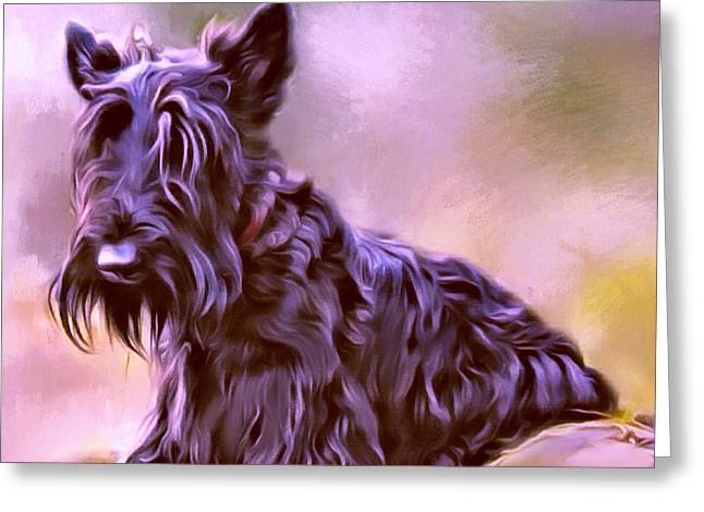 Scottish Terrier Puppy Greeting Cards - Scottish Terrier Portrait Greeting Card by Scott Wallace