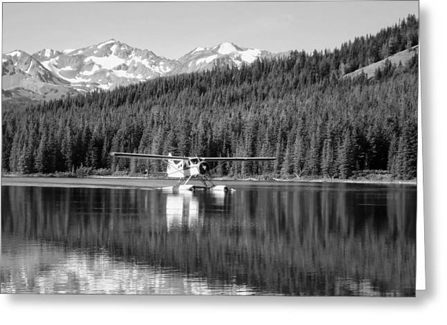 Beautiful Landing Greeting Cards - Seaplane in British Columbia Greeting Card by Mountain Dreams