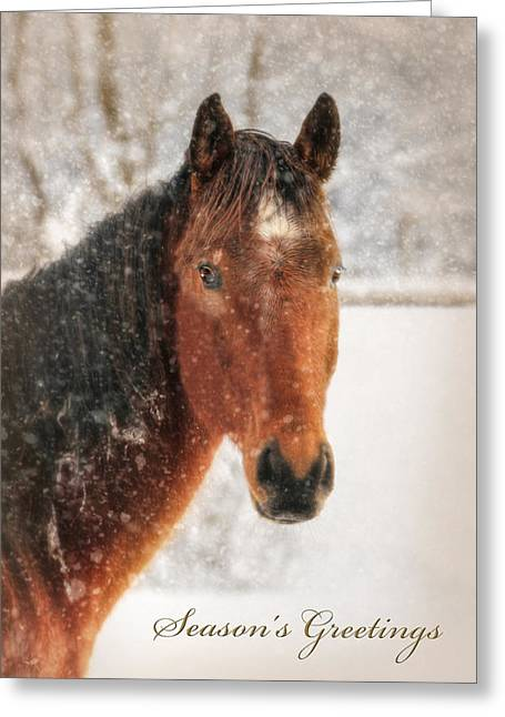 Wintry Digital Greeting Cards - Seasons Greetings Greeting Card by Lori Deiter