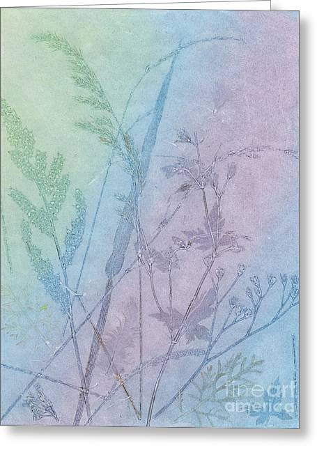 Pink Reliefs Greeting Cards - Seed grasses Greeting Card by Suzette Broad