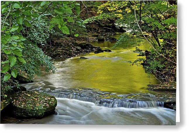 Euphoric Greeting Cards - Serene Stream Greeting Card by Frozen in Time Fine Art Photography