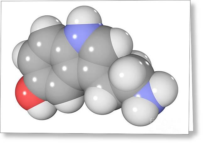 Serotonin Greeting Cards - Serotonin Neurotransmitter Molecule Greeting Card by Laguna Design
