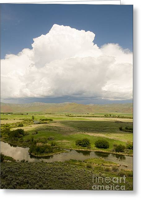 Idaho Scenery Greeting Cards - Silver Creek, Idaho Greeting Card by William H. Mullins