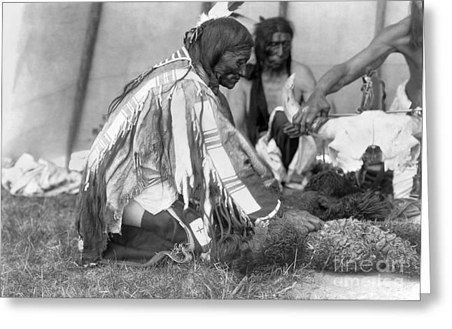 1907 Greeting Cards - SIOUX MEDICINE MAN, c1907 Greeting Card by Granger