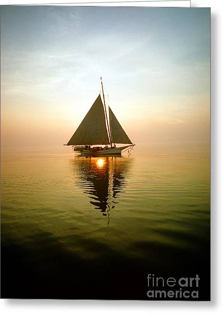 Gathering Greeting Cards - Skipjack Greeting Card by James L. Amos