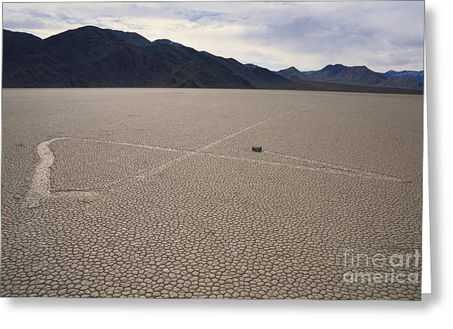 Moving Earth Greeting Cards - Sliding Rock On Racetrack Playa Greeting Card by Mark Newman