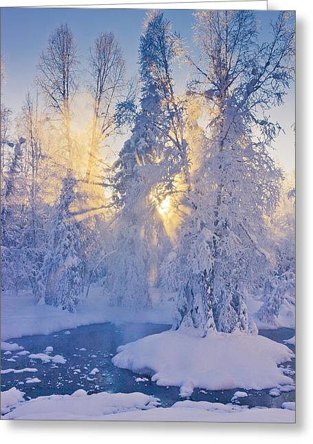 Snowy Evening Greeting Cards - Small Stream In A Hoarfrost Covered Greeting Card by Kevin Smith