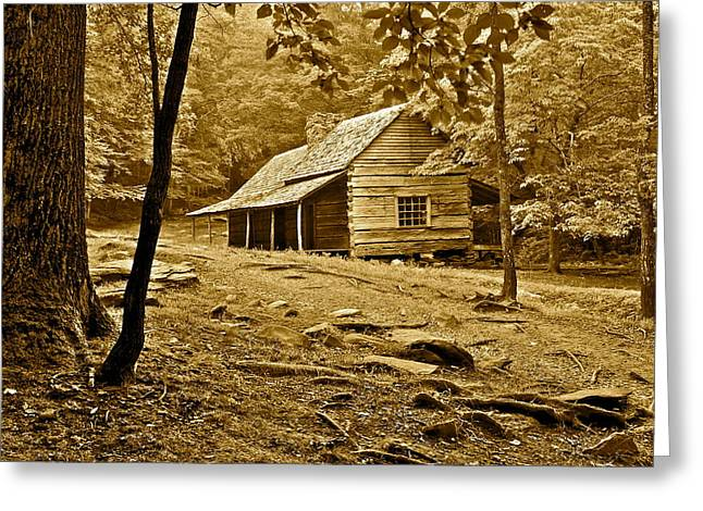 Mountain Cabin Greeting Cards - Smoky Mountain Cabin Greeting Card by Frozen in Time Fine Art Photography